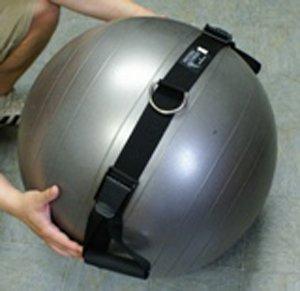 Haulin' Hooks Physio-Twist - Core and Oblique Trainer