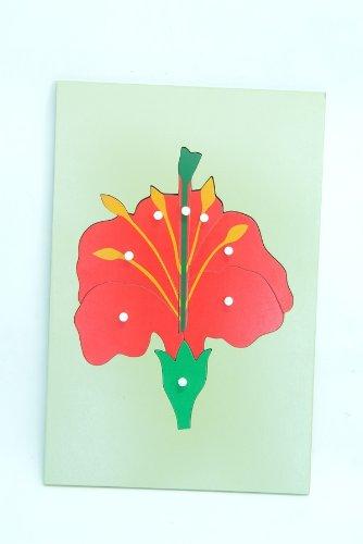 Montessori Big Flower Puzzle Botany
