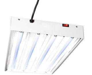 Hydrofarm FLT24 2-Foot Four Tube T5 Fluorescent Grow Light System