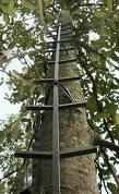 20 ft. Stick Ladder in Slate Gray by OL