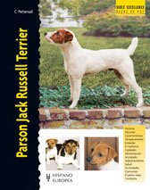 parson-jack-russell-terrier-excellence