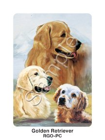 Best Friends Playing Cards, by Ruth Maystead - Golden Retriever