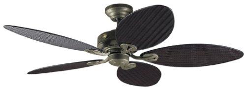 Hunter 23980 Bayview 54-Inch Five Antique Dark Wicker/Antique Dark Palm Leaf Plastic-Blades Ceiling Fan, Provencal Gold