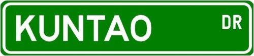 Kuntao Street Sign ~ Martial Arts Gift ~ Aluminum