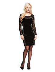 Petite Floral Lace Velour Panelled Dress