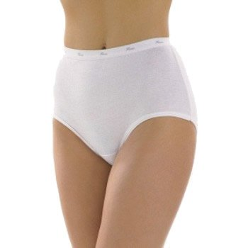 Hanes 3-Pack Cotton Brief 1_1400