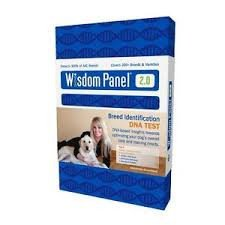 Wisdom Panel Insights Dog DNA Test Case Pack 1 Pieces