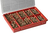 PIKE PRO.TOOL XDV1832PPT CHIPBOARD SCREW SET, 750PC (Pack of 1)