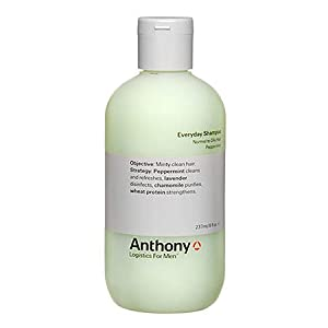 Anthony Logistics for Men Everyday Shampoo from Anthony Logistics for Men