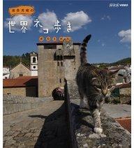岩合光昭の世界ネコ歩き ポルトガル(ポストカード付)