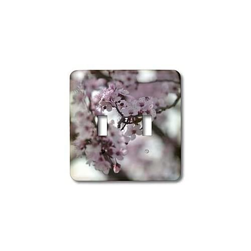 PS Flowers   Pretty Cherry Blossom Tree   Pink Flowers   Spring Photography   Light Switch Covers   double toggle switch