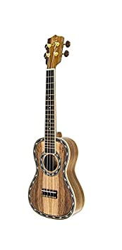 Yamaha C40M Klassikgitarre Fichte Matt Konzertgitarre Akustikgitarre