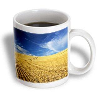 Danita Delimont - Farms - Farm Fields, Harvest Wheat, Palouse, Washington, USA - US48 TEG0425 - Terry Eggers - 15oz Mug (mug_148727_2)