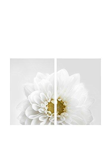 Art Addiction White Floral Closeup Set of 2, Multi, 36