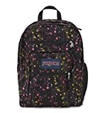 JanSport Big Student Day Pack - Multi Climbing Ditzy