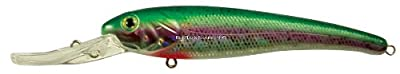 Manns Bait Company Textured Stretch 15 Fishing Lure Pack Of 1 12-ounce Rainbow Trout by Mann's Bait Company