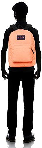 JanSport-Superbreak-Backpack