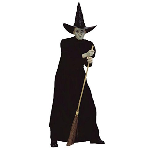 Adult Wicked Witch Halloween Costume (Size: Standard 8-12)