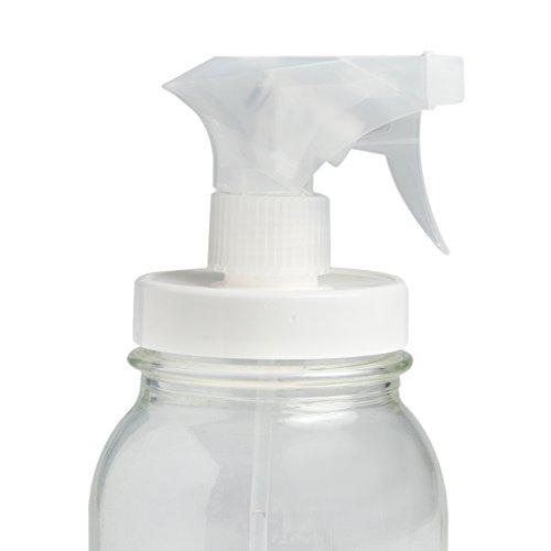 reCAP Mason Adapta Sprayer, Regular Mouth, Canning Jar Lid, White (Recap Lids For Mason Jars compare prices)