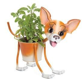Chihuahua Planter