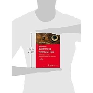 Müller/Bährmann Bestimmung wirbelloser Tiere: Bildtafeln für zoologische Bestimmungsüb