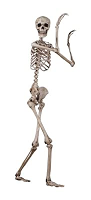 Seasons Crazy Bonez Pose-N-Stay Skeleton from Seasons USA, Inc.
