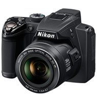 Nikon Coolpix P500 is one of the Best Nikon Digital Cameras for Photos of Children or Pets