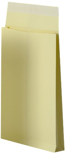 Oxford 100100809 Buste autoadesive, 229 x 324, carta Kraft, confezione da 10, colore: oro