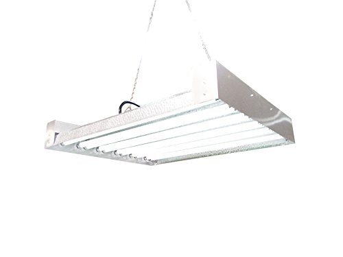 T5 Grow Light (2Ft 12Lamps) Dl8212 Ho Fluorescent Hydroponic Bloom Veg Daisy Chain With Bulbs