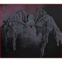 Halloween decoration - GIANT Creepy Cloth SPIDER - extends 4 feet! (Pack of 3) from fun express