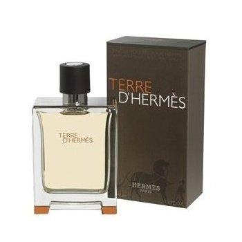 Terre D'Hermes DHermes Eau De Toilette Sprayby Hermes