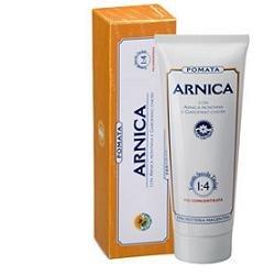 ARNICA FORTE POMATA 100 ml