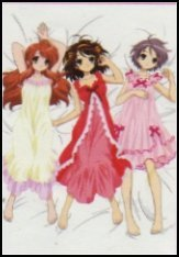 Melancholy of Haruhi Suzumiya Cloth Wall Scroll Poster T-004