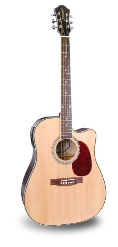Jammin Pro ACOUSTIC505   Acoustic-Electric Guitar Reviews