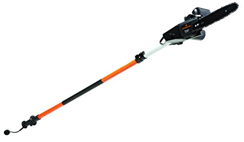 Remington RM1025P Ranger 10-Inch 8 Amp 2-in-1 Electric Chain Saw/Pole Saw Combo (Power Pole Saw compare prices)