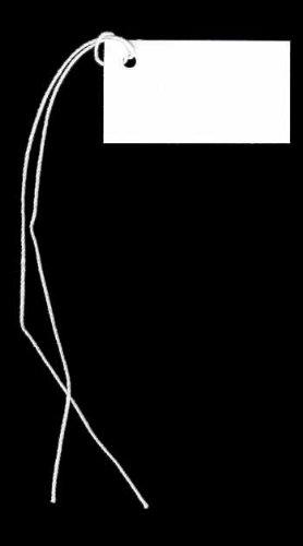 100 Blank WHITE Hang Tags (1