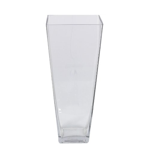 Essential Décor Entrada Collection Glass Vase, 16 by 6.5-Inch, Clear