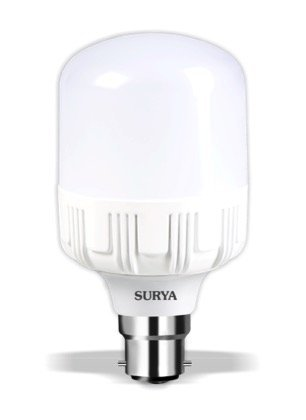 Surya 18W B22 1620L Eco LED Bulb (White)