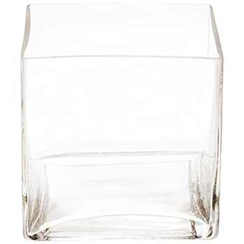 Flower Glass Vase Decorative Centerpiece For Home or Wedding by Royal Imports - Clear Glass, Cube Shape, 6