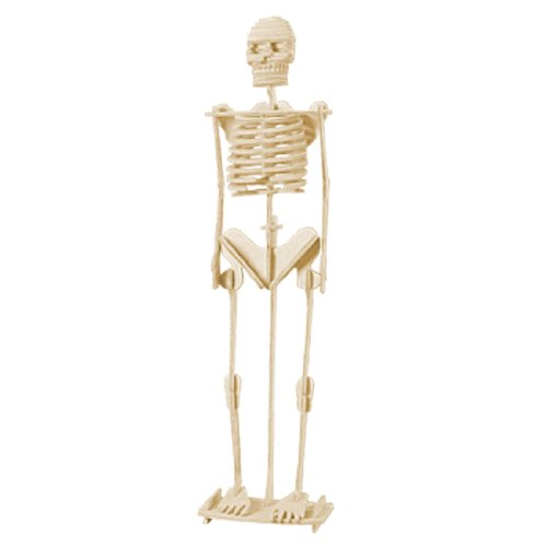 31itdIriSWL Cheap Buy  Como Child Assemble Human Skeleton Model 3D Wood Puzzle Toy Construction Kit