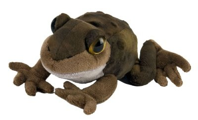 "Frog Watch Eastern Spadefoot 7"" by Wild Republic"