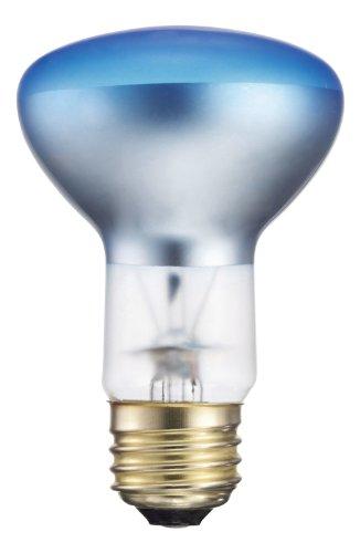 Philips 415315 Agro Plant Light 50-Watt R20 Flood