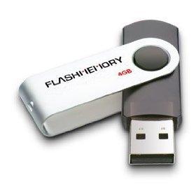 Flash Memory 4GB USB DRIVE