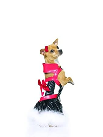 Queen of Hearts Costumes for Dogs