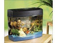 Acrylglas-Aquarium-Poseidon-20-Liter-Komplettset