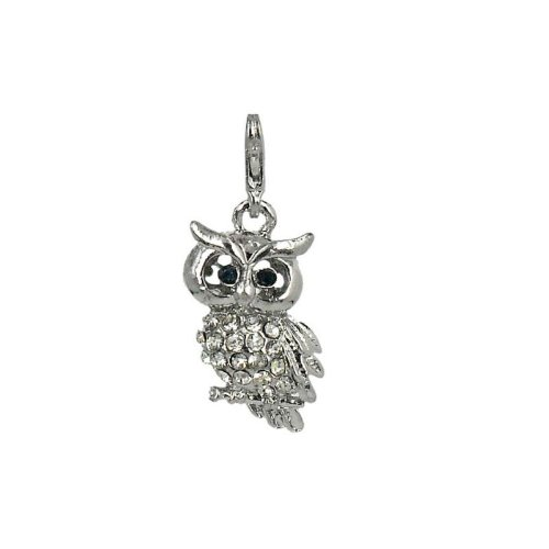 Charm Eule aus Stahl by Charming Charms. Versandkostenfrei ab 30 Euro