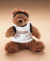 Boyds Tony Stewart Bear #20 - #919222