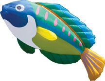 Christophe Goy Giant Inflatable Peacock Wrasse - Line Laundry Kite.