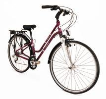 Torino Women's Trekking Bicycle 15