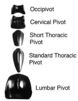 pivotal-therapy-occipivot-pivotal-therapy-system-component-by-rolyn-prest